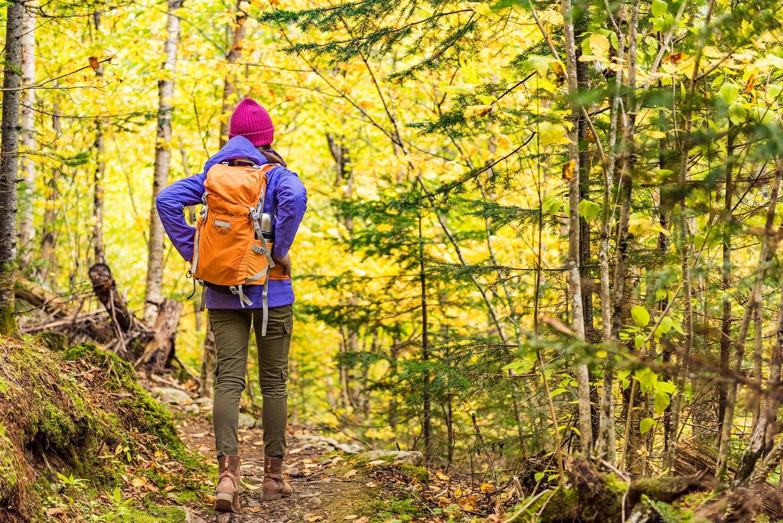 L'écotourisme vous incite à bien rester dans les sentiers lorsque vous vous balader afin de n'endommager la flore d'aucune manière