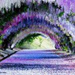 Voyage au Japon: 10 activités incontournables à faire