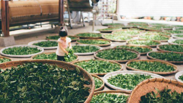 20 aliments importés de Chine qu'il vaut mieux éviter!