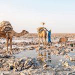 Voyage et tourisme: 10 expériences de vacances à essayer