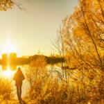 Dix activités gratuites à faire cet automne dans le coin de Montréal