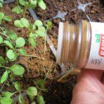 36 Incredibly Useful Garden Tips That Actually Work!
