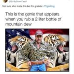 The Most Hilarious Memes Inspired By Tiger King