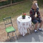 Craziest Images Caught On Google Street View
